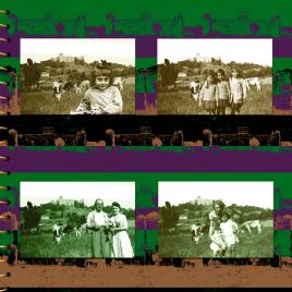 hervey, déclinaisons, gravure numérique, album de famille