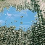 hervey, digigraphie, nuagerie, paysage de Bourgogne