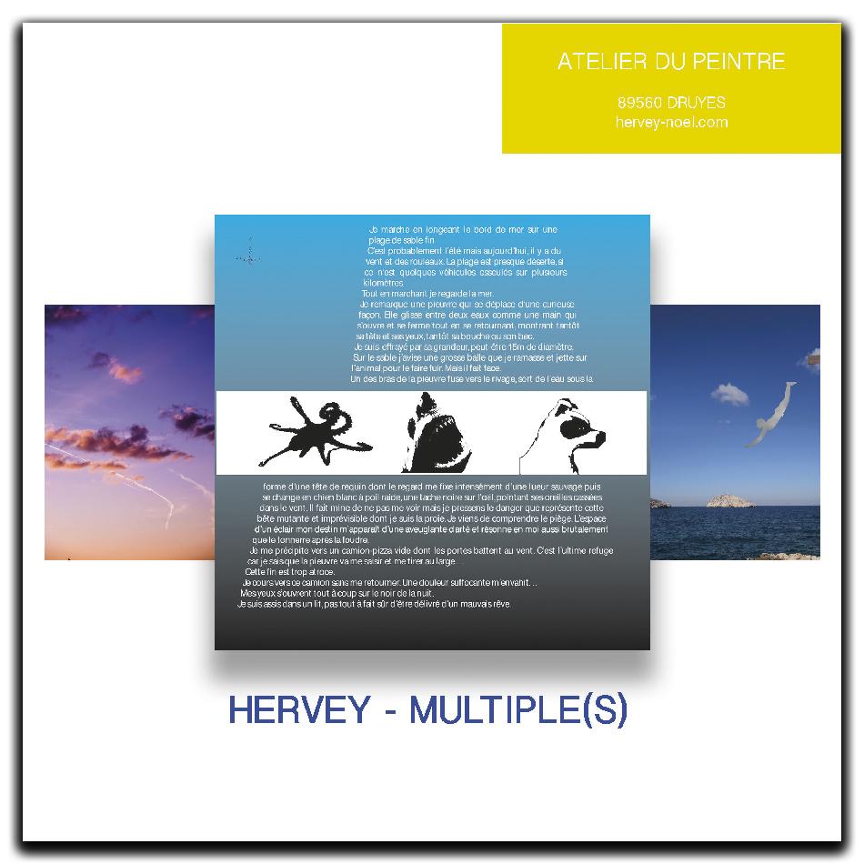 publication-multiples-hervey-livres-estampes