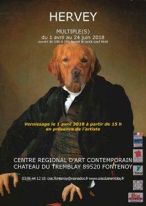 Hervey, Centre Régional d'Art Contemporain de Fontenoy, avril-mai-juin 2018
