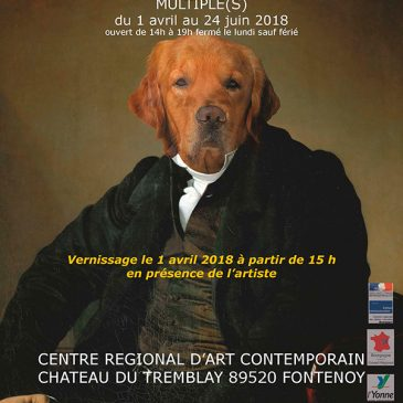 Centre Régional d'Art Contemporain – Vernissage
