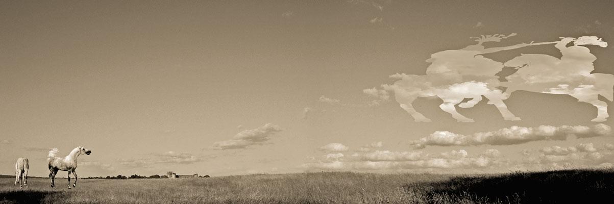 hervey, nuagerie, digigraphie, nuages combattants