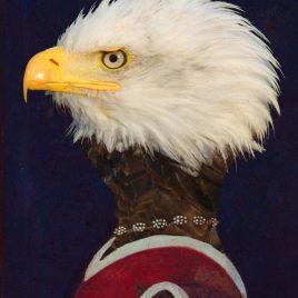 hervey, digigraphie, bestiaire imaginaire, gravure numérique, hommage à Uccello