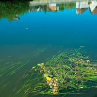 hervey_digigraphie_clamecy-reflets-river21