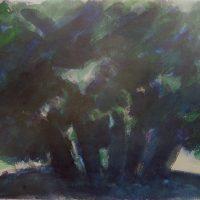 hervey, peinture, olivier, aquarelle6