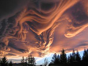 nuage asparatus