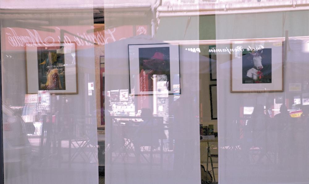 hervey_clamecy-reflets-vitrines-10