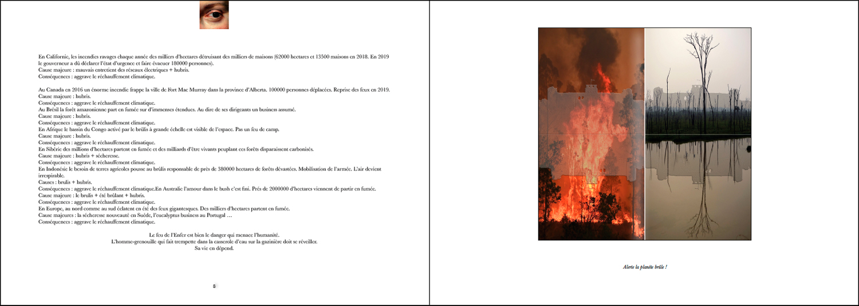 Hervey Livre tome 2 DECLINAISONS ouverture en double page