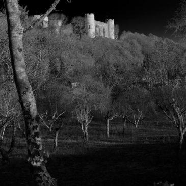 Château de Druyes en noir et blanc