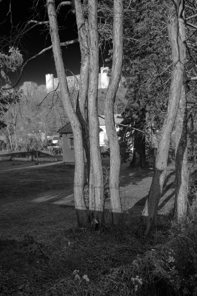 Hervey Druyes 3 photographie en noir et blanc