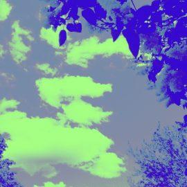 Hervey Coin de ciel coin de jardin 1 bis