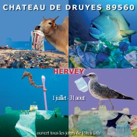 Affiche exposition au château de Druyes Eté 2021